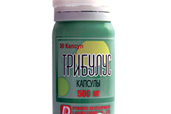 Трибулус (Tribulus) от Dynamic Development